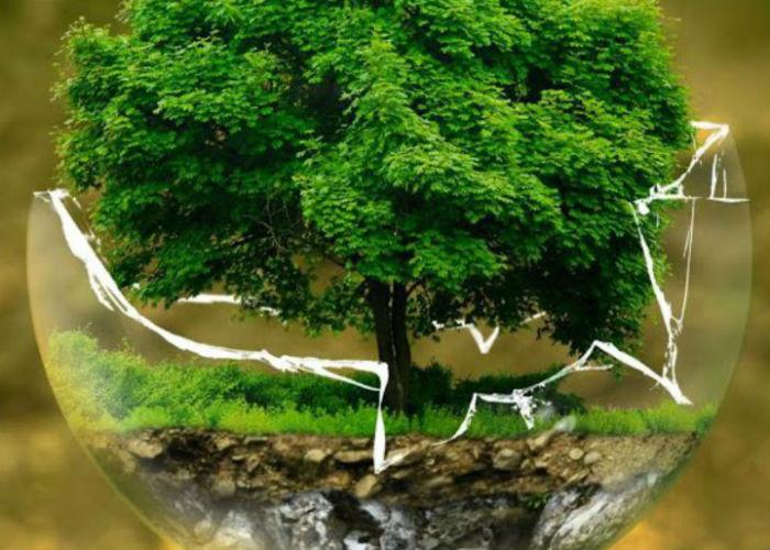 Van papier naar praktijk: Hoe voer je de duurzaamheidsagenda uit?