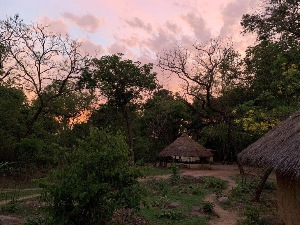 Telefoon. Het kamp van de vrijwilligers bij ondergaande zon in het Chimpanzee Conservation Center.